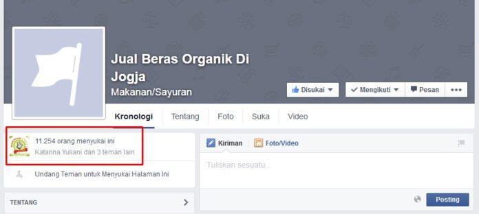 jasa like fanpage facebook