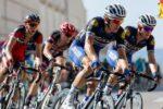 Niche Artikel Olahraga yang Memiliki Peminat Sangat Loyal